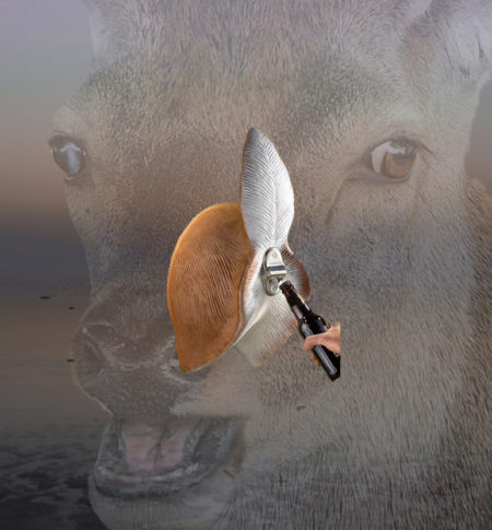 impress the ladies,deer ass bottle opener, greatest gift, gift ideas, this is it, i want it all, take my money